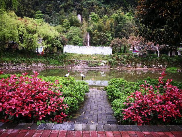 重庆周边游,国庆中秋出游,重庆主城区就有摆脱烦恼散心的旅游去处